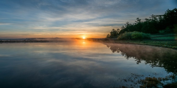 Jackle's Beach Lagoon, San Juan Island WA, 31 March 2016 Sony A7Rii + Canon TS-E 24mm/3.5 1/25s @ f/8 iso 100 (3 shot shift stitch pano)