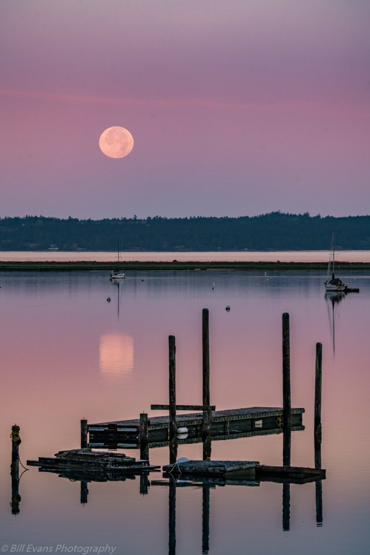 Image No. 2 - Full Moon Setting over Fisherman Bay (Lopez Island, Washington)   Sony A7Rii  + Sigma 150-600mm (1/200s @ f/8 iso 800)
