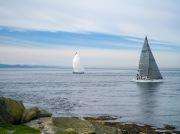 Patos Island Washington